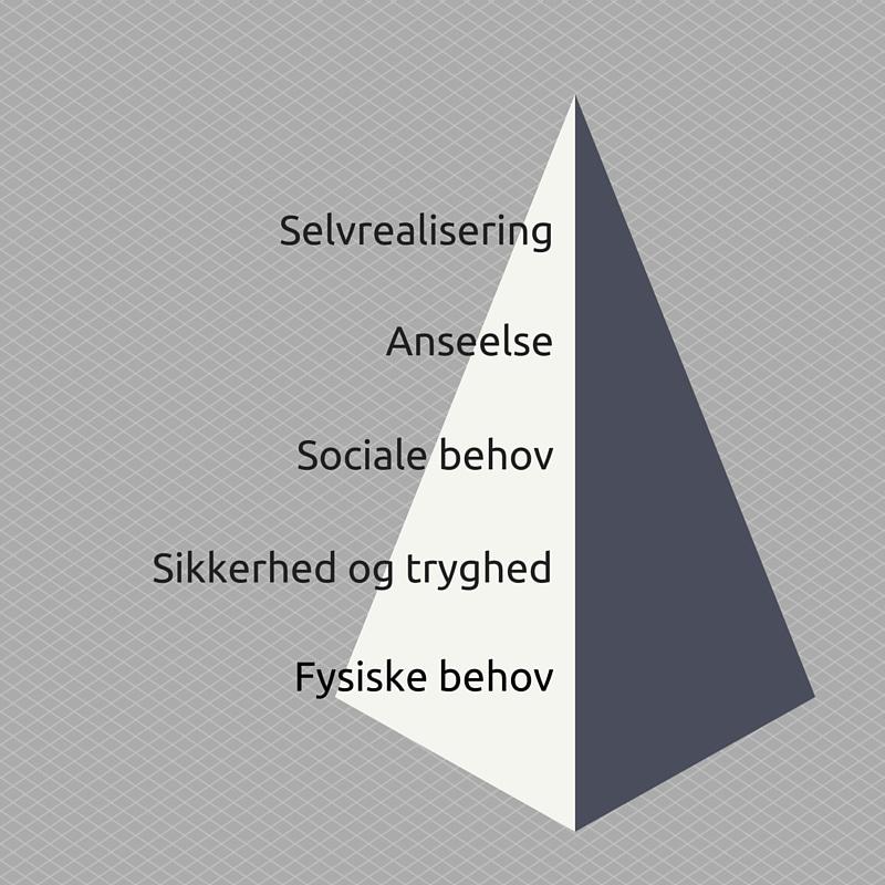 Skriv til de enkelte behov i Maslows behovspyramide